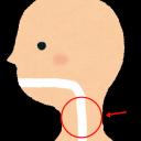 上気道炎の特徴と対処