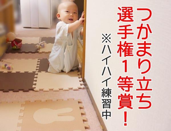 赤ちゃんのハイハイレース!全国展開の2種を比較