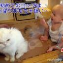 赤ちゃんのコップデビュー!練習の第一歩は?