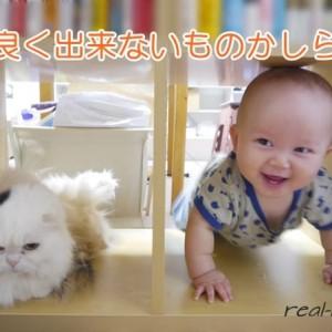 赤ちゃんとペットの共存アクシデント!突然のマーキング騒動と3つの対策
