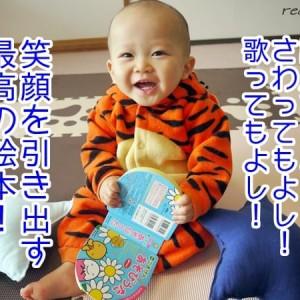 赤ちゃんの絵本はいつから?どれがおすすめ?我が家で人気の絵本ランキング3!
