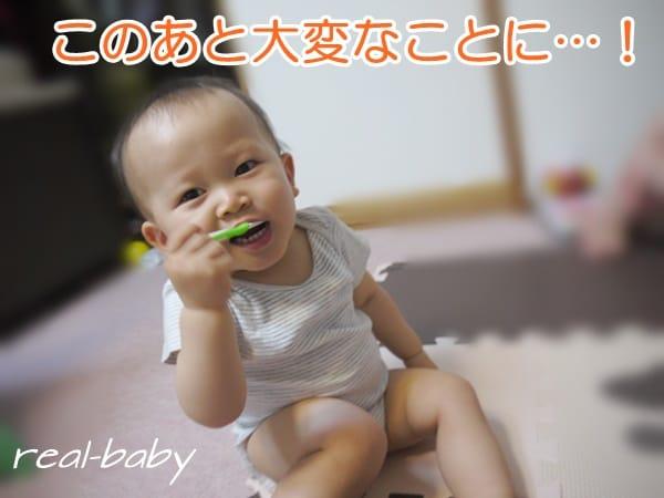 ≪生後1歳半≫赤ちゃんの歯磨きがうまく進まない!我が家の3つの施策